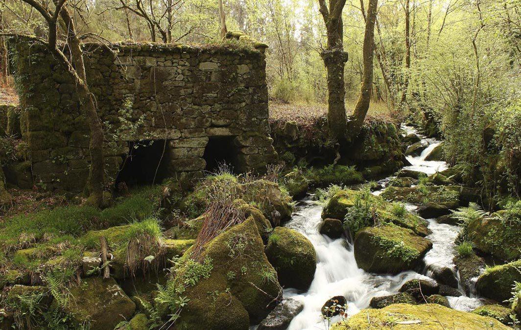 sociedad-visita-galicia-con-convencion-anual-grupo-cybas